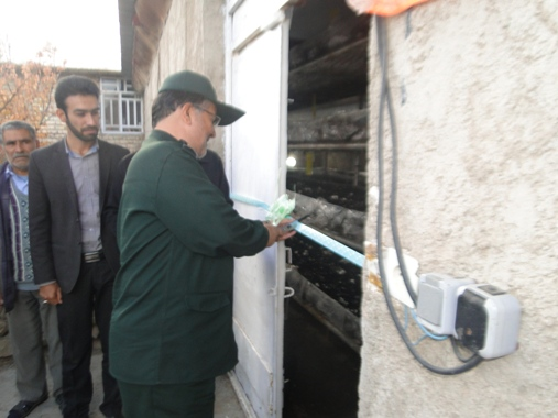 افتتاح کارگاه پرورش تولید قارچ خوراکی